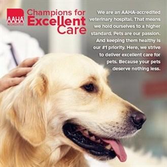 AAHA Accredited Hospital image