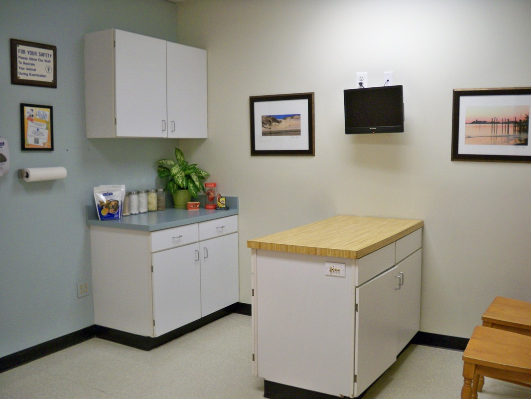 exmination room image